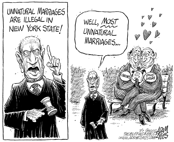 ny state, supreme court, gay marraige, unions, legislature